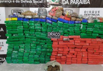 Polícia Civil prende homem e apreende 350 quilos de maconha escondidos em sítio no Sertão